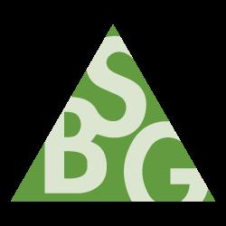 BSG S.r.l.